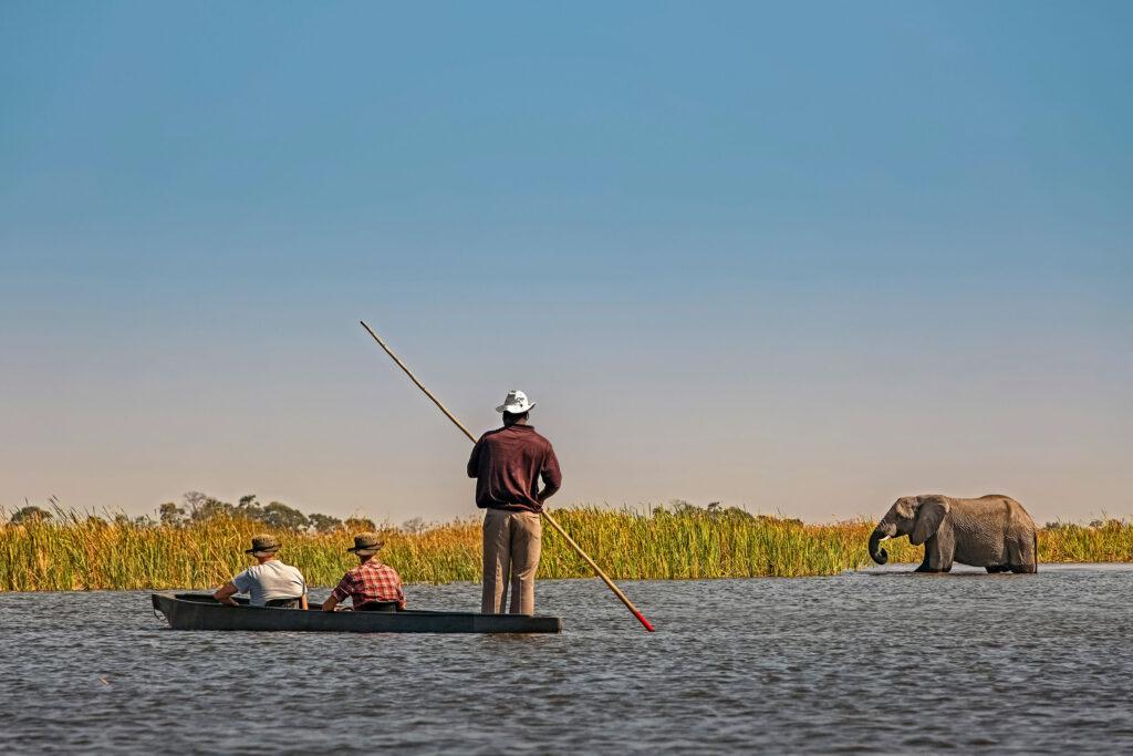 Botswana Okavango Delta mokoro elephant landscape boat safaris African safari holidays