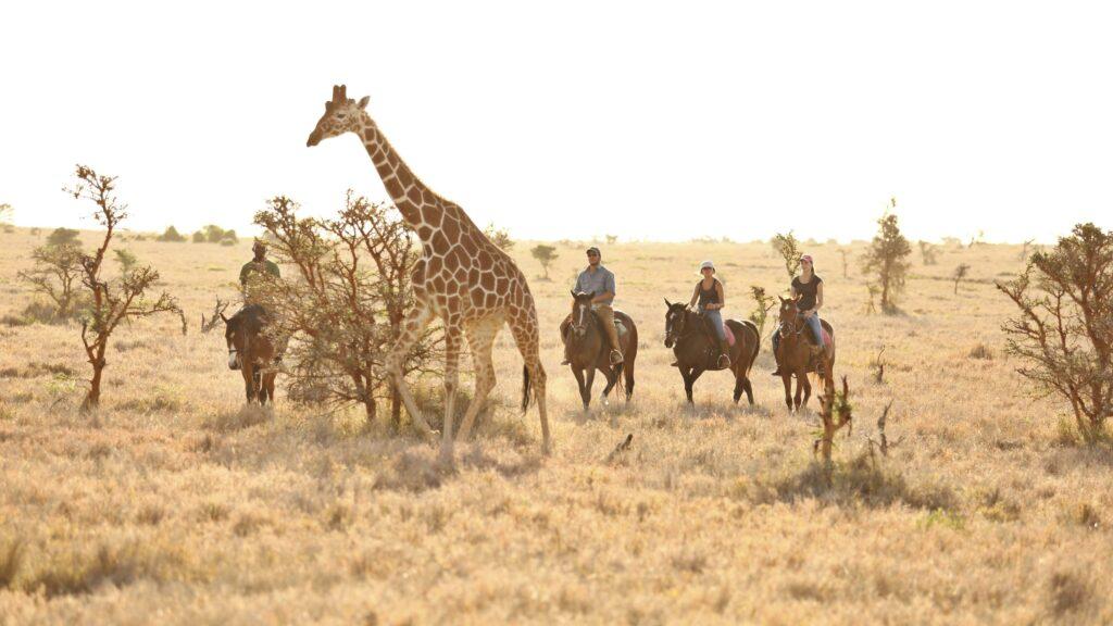 Kenya Lewa Wilderness family horse riding safari teenagers